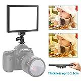 Neewer Kamera / Camcorder Videoleuchte SMD LED Licht Feld für weichere Beleuchtung, 3200K bis 5600K Farbtemperatur und dimmbare Licht, Ultra dünn, T100 (Batterie nicht im Lieferumfang enthalten)