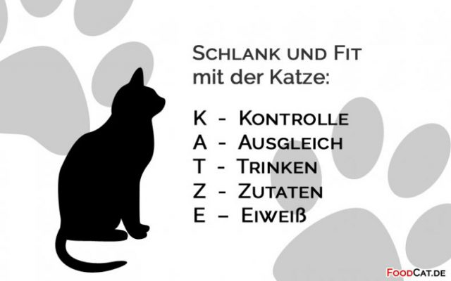 K.A.T.Z.E.-Regel – oder wie ich in einem Jahr über 10kg abgenommen habe